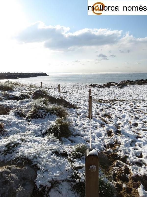 playa de palma nevada